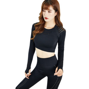 S3001 SEAMLESS LONG SLEEVE CROP TOP