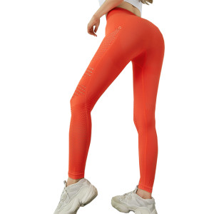 Energy Seamless Leggings.