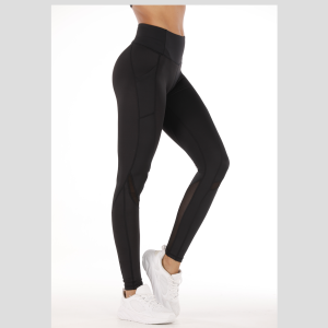Gym Leggings with mesh